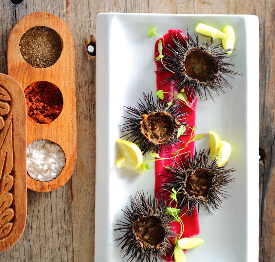 Plate of sea urchins