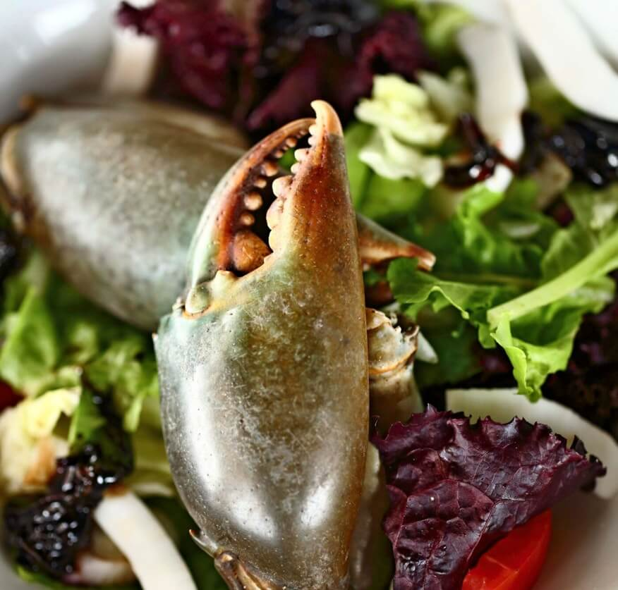 Crab claw served on lettuce