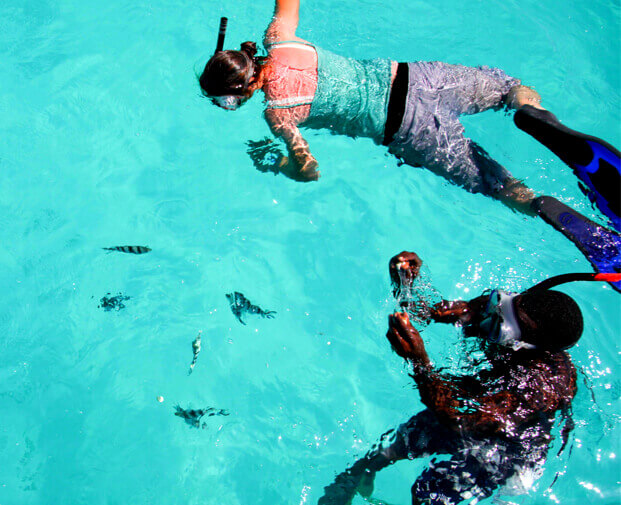 Children snorkelling in the sea with fish